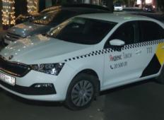 Аренда Skoda Rapid 2020 в Краснодаре