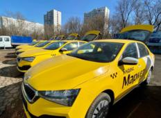 Аренда Skoda Rapid 2021 в Москве и области