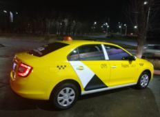 Аренда Skoda Rapid 2019 в Туле